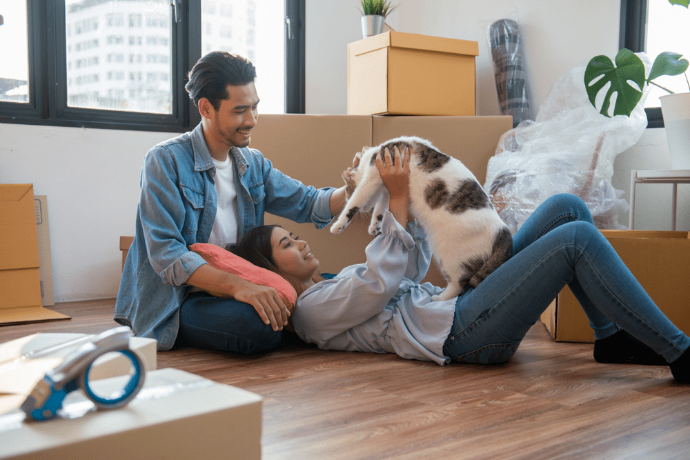 couple feeling happy relaxing and play with their cat